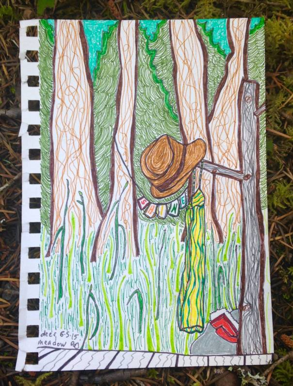 shine deer meadow